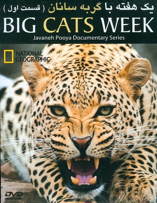 خرید فیلم مستند یک هفته با گربه سانان (قسمت یک)