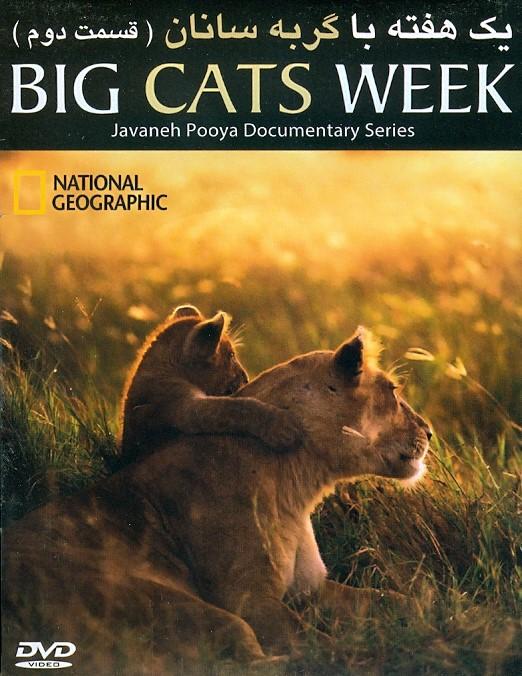 خرید فیلم  مستند یک هفته با گربه سانان (قسمت دو)