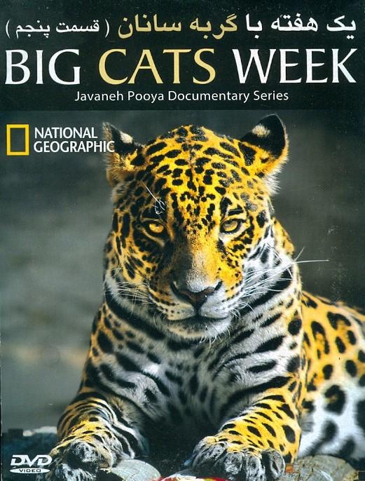 خرید فیلم مستند یک هفته با گربه سانان (قسمت پنج)